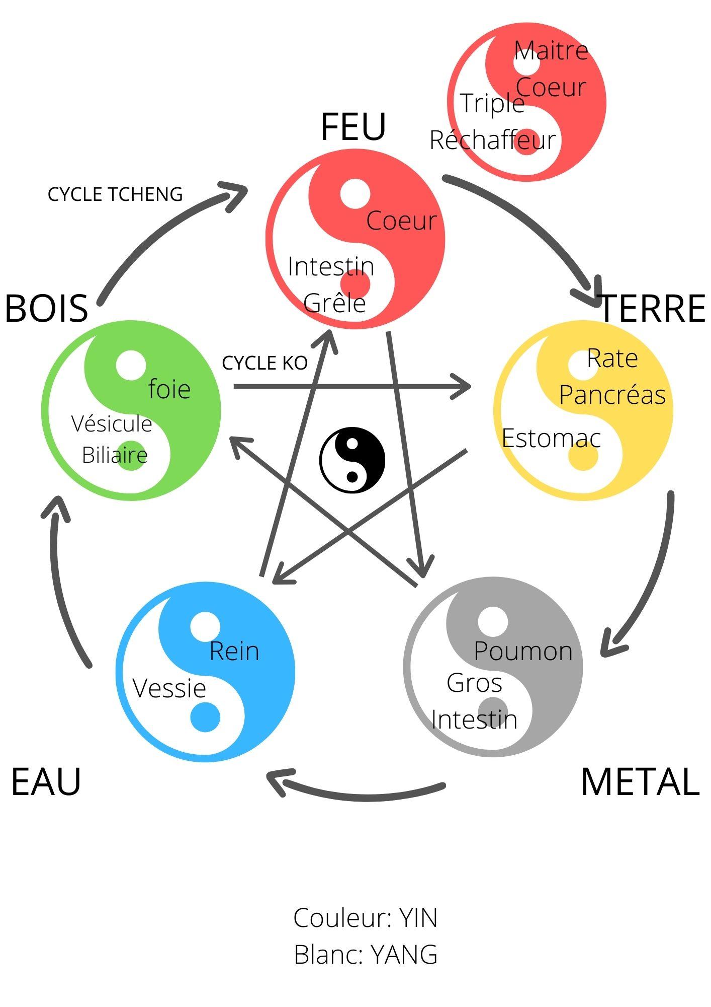 cinq_elements_bois_feu_eau_terre_metal